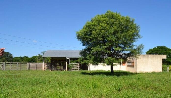 VIS Rural