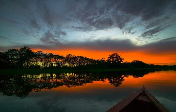Amazonas Internacional