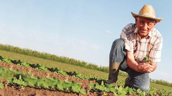 créditos nuevos para el agro colombiano