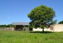formalización de propiedad rural