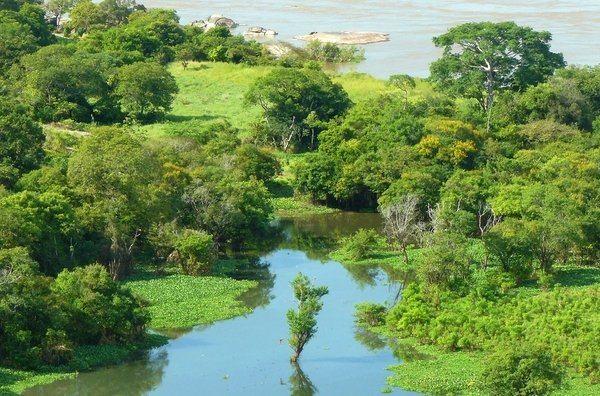 Selva Adentro-Amazonas