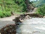 Reserva forestal de Navarco