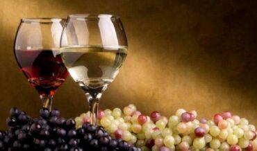 como-degustar-vino