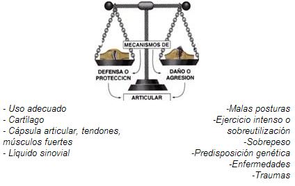 Mecanismo de articular