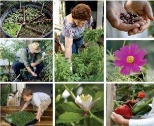 La horticultura terapéutica