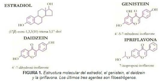 Estructura molecular del estradiol, Genistein, Daidzen y la Ipriflavona