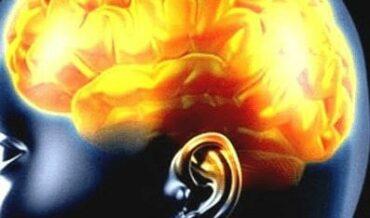 Epilepsia Primaria: Discusión