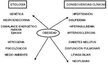Etiología de la obesidad