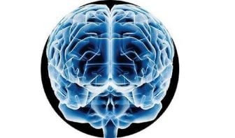 Capacidad Predictiva del Cerebro
