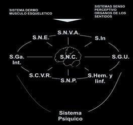Interacción de Sistemas