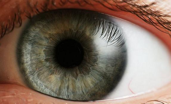Detección Temprana de Alteraciones Visuales y Patologías Oculares