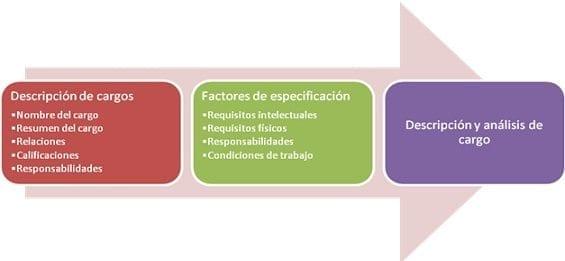 Diseño del cargos en la organización