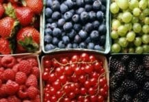 enfermedad cronica en nutrientes