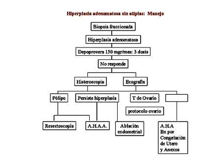 Hiperplasia adenomatosa sin  atipias