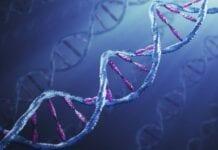 bioetica, ciencia, medicina
