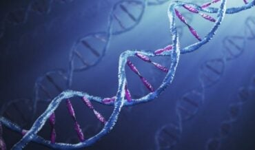 Ética médica y Bioética
