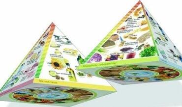 Alimentación y salud - guía