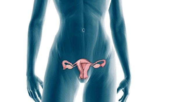 Terapia Estrogénica y Terapia de Suplencia