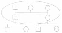puntos a tener en cuenta en el familiograma