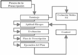 vam-102 - Gráfica 1. Pasos para la ejecución del programa de Prescripción del Ejercicio