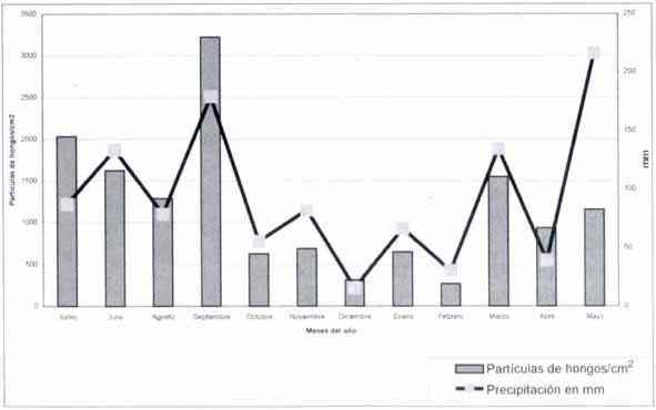Distribución mensual de partículas de hongos con relación a la precipitación pluvial