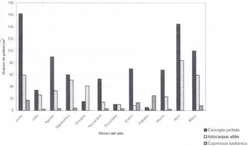 Comportamiento mensual de pólenes de Cecropia peltata, Artocarpus altilis y Cupressus lusitanica