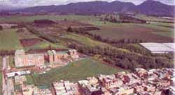 humedales-bog49