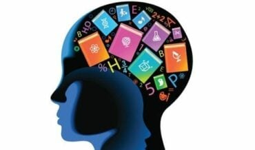 Estímulos del Aprendizaje