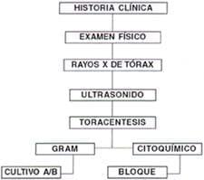 Examen paraclinicos y manejo