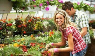 Y Ahora estamos Cuidando los Jardines