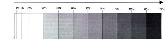Esquema del espectro clínico de la infección urinaria