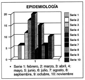 Epidemiología por meses