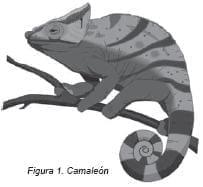Efecto Camaleón