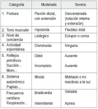 La encefalopatía
