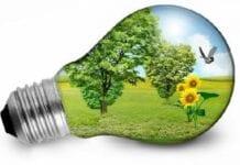 Sostenibilidad Ambiental Y Prevención Del Riesgo