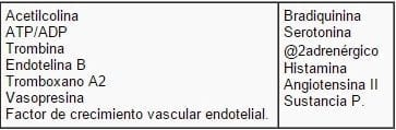 Receptores a nivel de membrana endotelial.