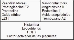 Productos derivados del endotelio