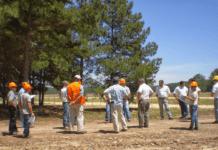 Ley Forestal Protección y Sanidad