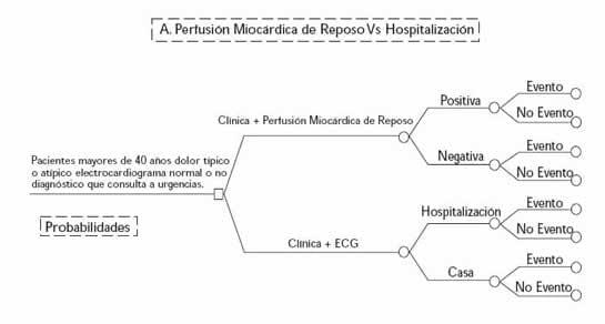 Árbol A Perfusión Miocárdica