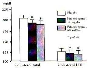 Efectos de los fitoestrógenos