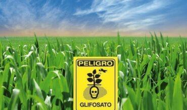 Glifosato en Urgencias Toxicologicas