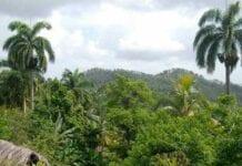 Normas de Preservación Ambiental