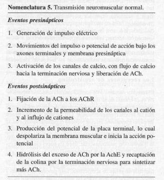 Transmisión Neuromuscular Normal