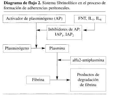 Sistema Fibrinolítico