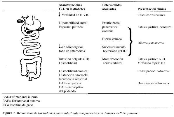 mecanismo de neuropatía en diabetes mellitus