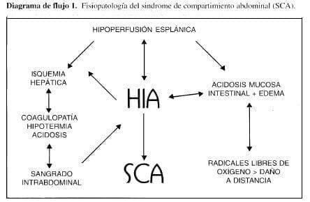 Fisiopatología del Sindrome de Compartimiento Abdominal
