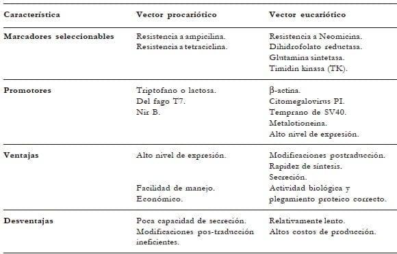Vectores de expresión tanto procarióticos como eucarióticos