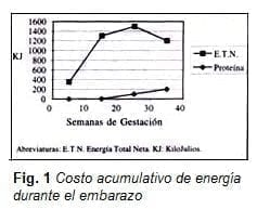 Costo Acumulativo de Energía durante el Embarazo