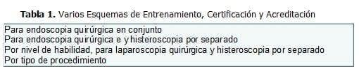 Laparoscopia Quirúrgica, Esquemas de Entrenamiento