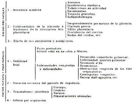 Asfixia Neo-Naturum